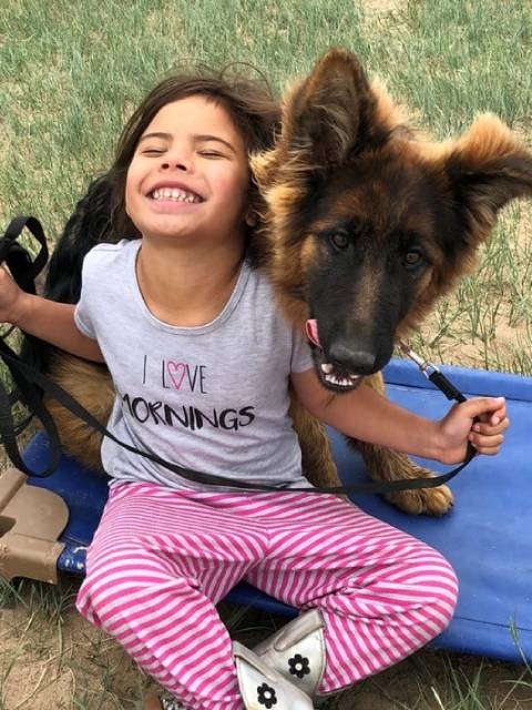 A German Shepherd and a young girl smiling